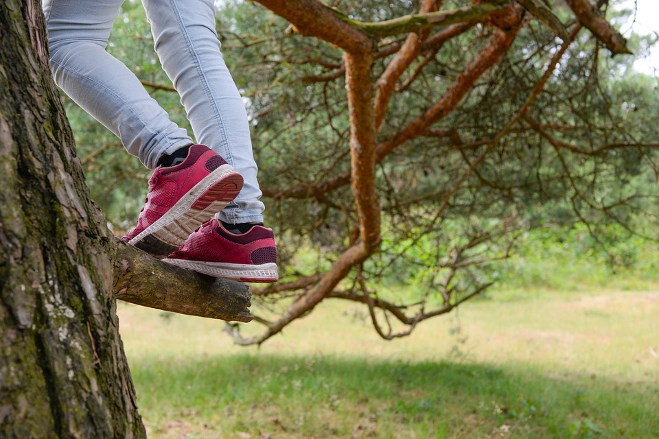 Parent-enfant : Comment le contact avec la nature fortifie l'envie d'apprendre  ?