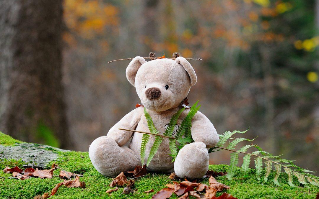 Parent-enfant : Comment la nature aide au retour au calme